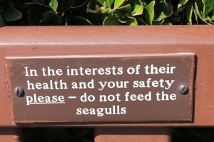 Health and safety for seagulls as well!