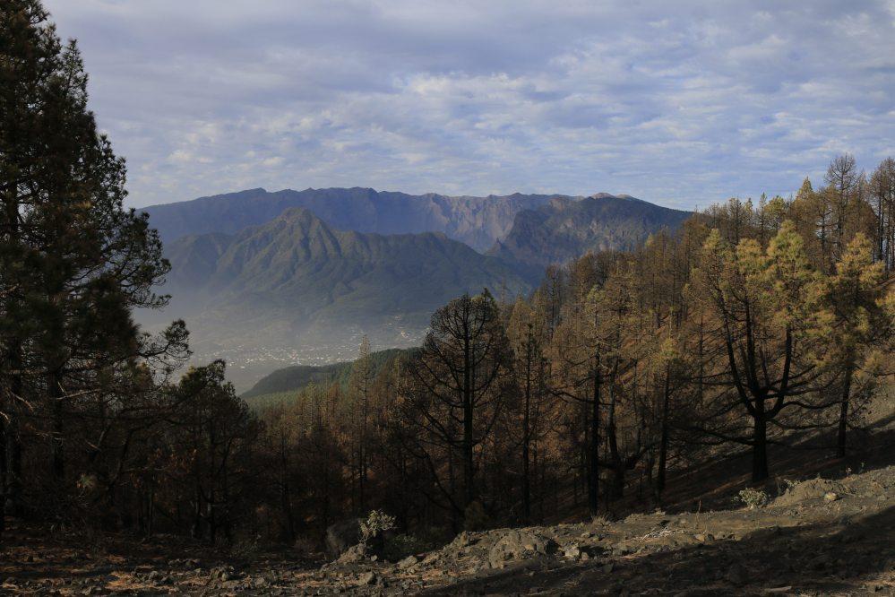 La Palma volcano crater Roque de Los Muchachos