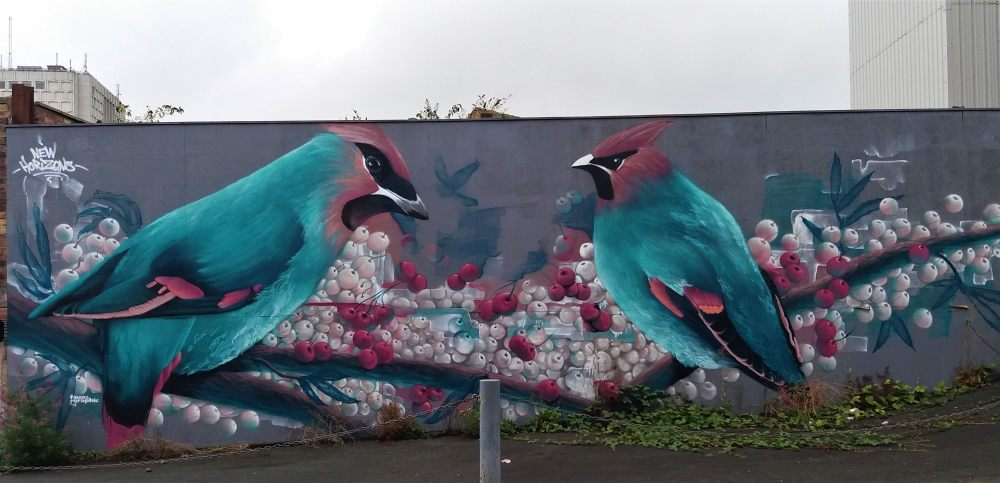 Stoke on Trent street art birds