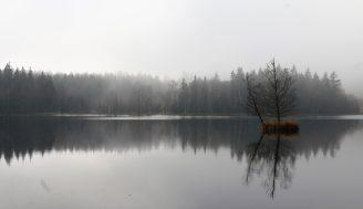 morning walk at Kladská nature reserve
