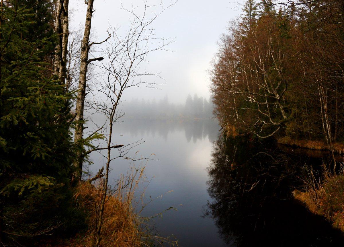 Autumn morning walk in the Kladská nature reserve